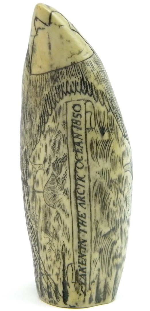 Walrosszahn vogel 14cm clever deko - Kolonialstil deko ...
